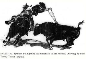 horse-bullfighting