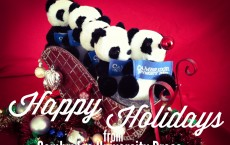happy holidays - pandas on a sleigh