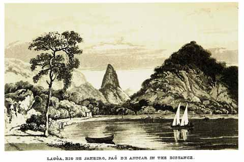 An illustration from Caldcleugh's 'Travels in South America'