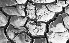Drought cracked land. Photo: Bert Kaufmann via Creative Commons.