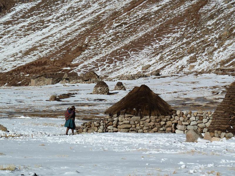 Woman in the Altiplano of Peru (at close to 5000 m asl), after fresh snowfall, reaching a temporary hut