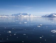 Professor David Walton discusses climate change in polar regions