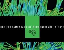 Cambridge Fundamentals of Neuroscience in Psychology