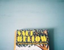 Saul Bellow book jacket