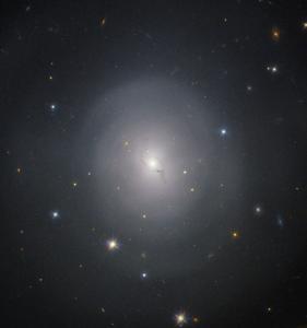 GW170817 in the galaxy NGC 4993