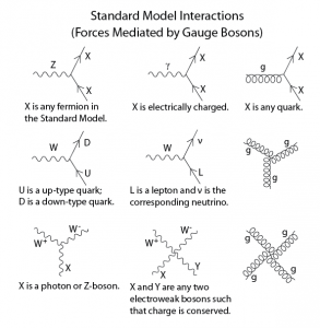 Standard Model Feynman Diagrams