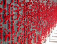 Remembering the Armistice blog post