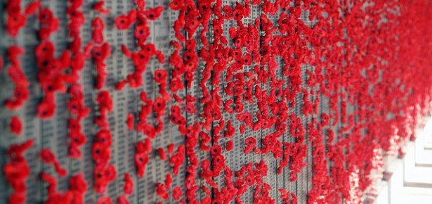 Remembering the Armistice blog post