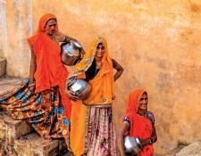 Environmental History of India