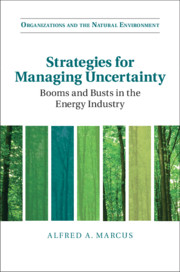 Strategies for Managing Uncertainty by Alfred Marcus