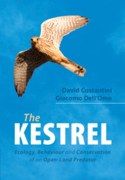The Kestrel by David Costantini and Giacomo Dell'Omo