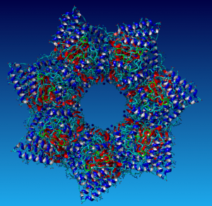 A chiral machine for folding proteins - biological complexity and beauty in action
